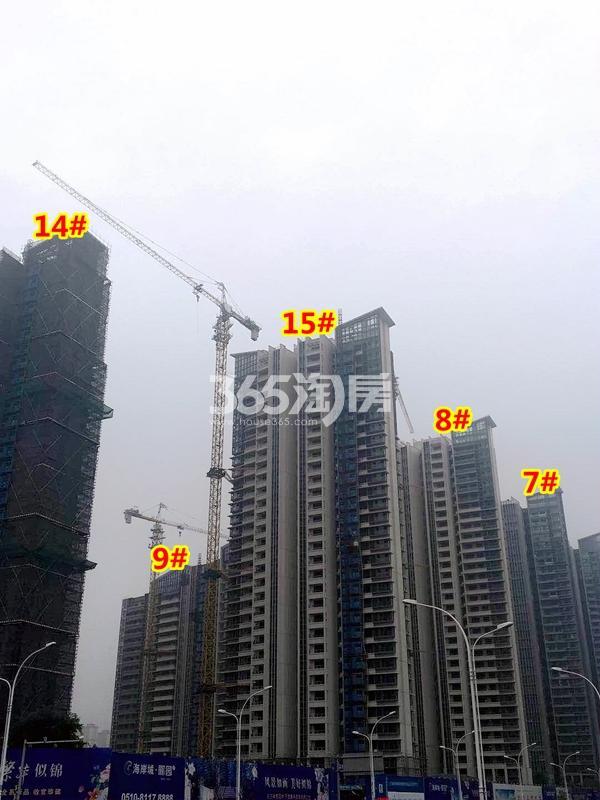 海岸城·郦园7-9#、14#、15#楼工程进度实景(2018.5摄)
