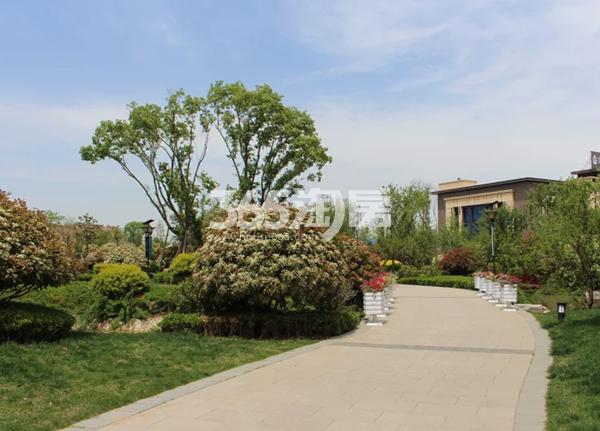 德杰国际城实景图