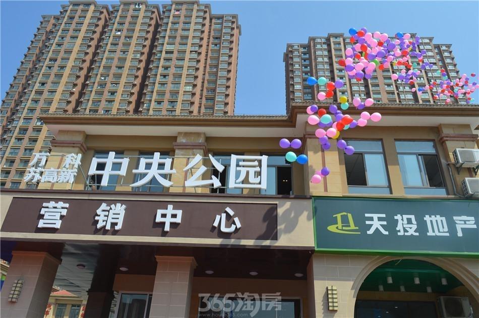 万科苏高新中央公园实景图