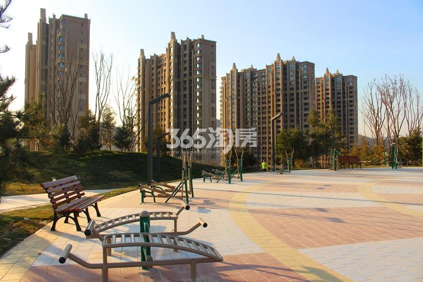 兰州碧桂园体育公园(2017.11.29)