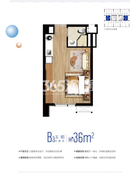 云树公馆36㎡平层户型图
