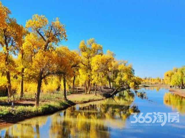 湖州德清《临杭美岸》一步之遥的杭州你想来一起看看吗