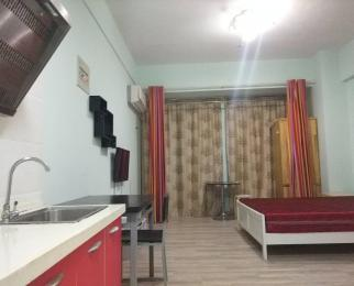 大唐国际公寓 一室一厅 拎包入住 中等装修 家具家电