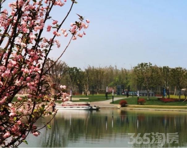中国第一水乡,5A古镇中心,首付30万起湖景洋房