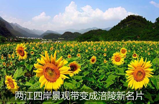 两江四岸景观带变成涪陵新名片