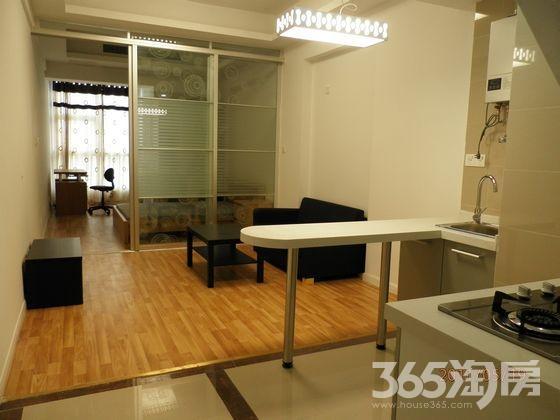 中商万豪中心公寓1室1厅1卫52㎡整租精装。可月付