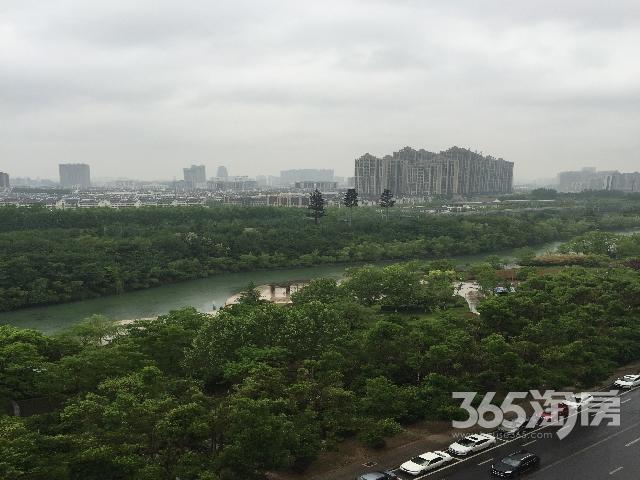 个人急租天鹅湖万达广场广电中心御龙湾独立卫生间主卧无费用