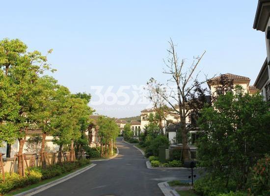 美好紫蓬山壹号项目环境实景图(2017.12.4)