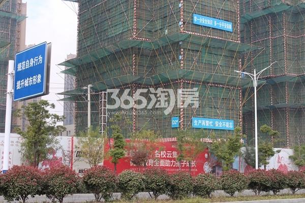 蚌埠国购广场 三期大观2# 201712