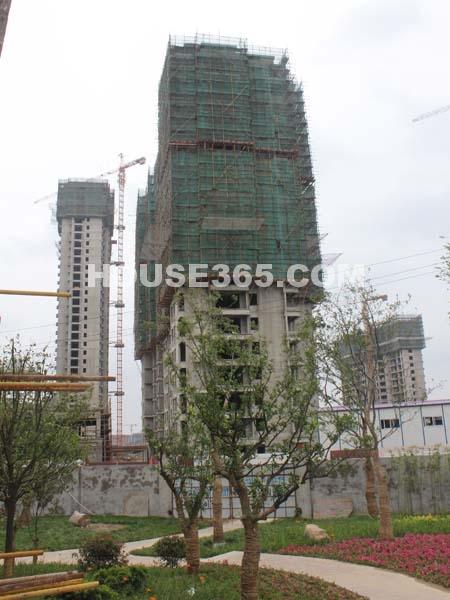 工程进度(2011.6.30)