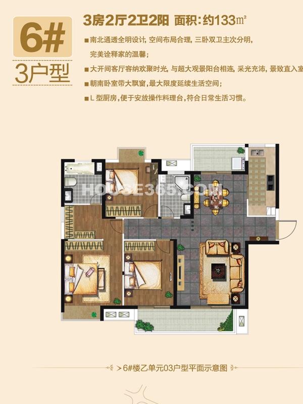 6#楼3户型-三房两厅两卫两阳台