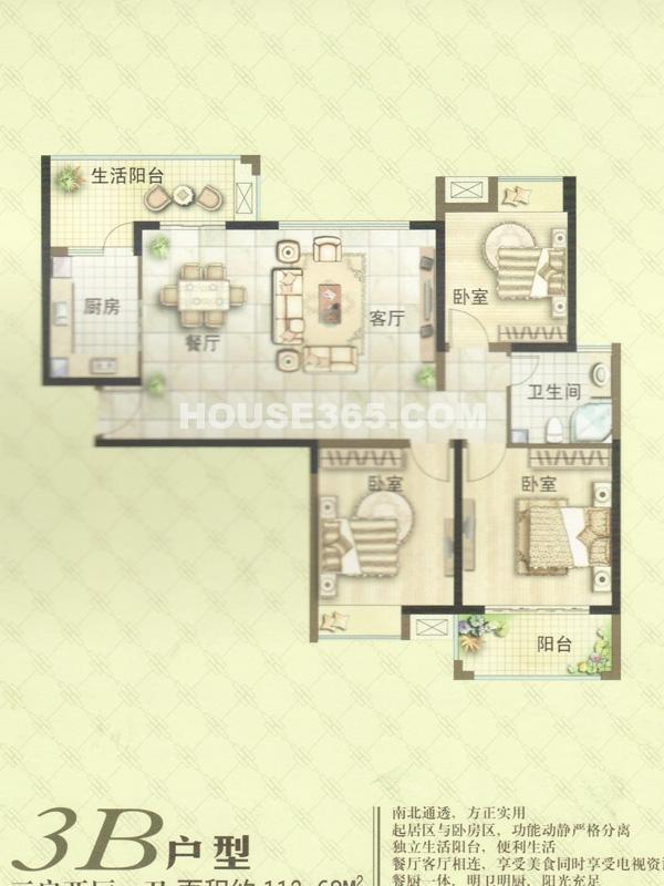 3#楼户型三室两厅