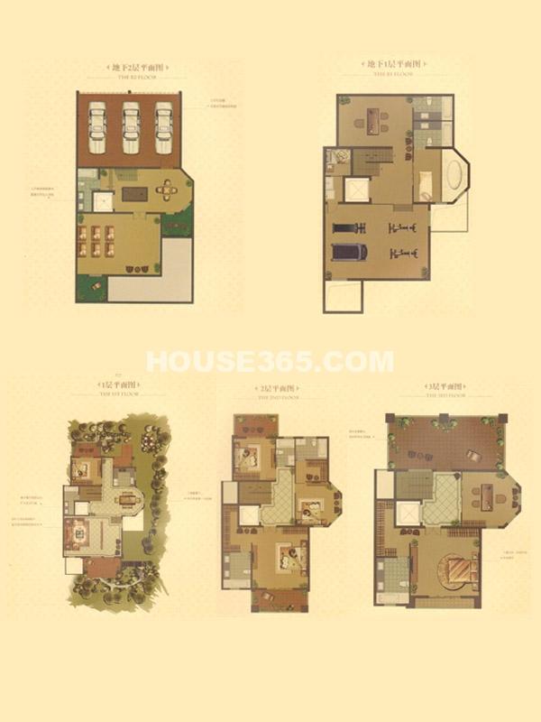 别墅D户型-总建筑面积567㎡