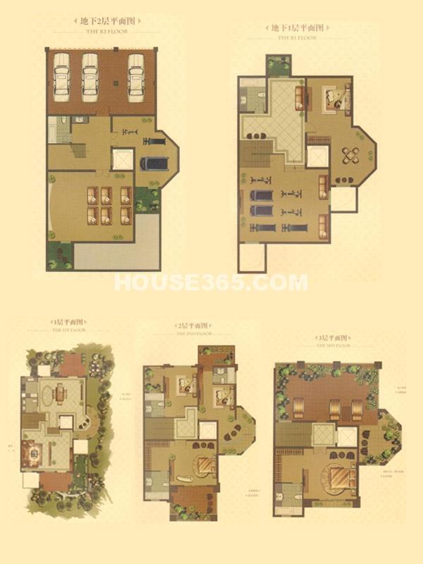 别墅C户型-总建筑面积567㎡