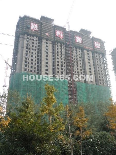 融科玖瑞尚城2012.11.1实景图