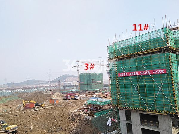 珍宝岛熙悦府在建3、11#楼实景图(3.14)