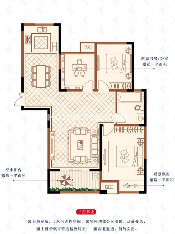 D户型-3房2厅1卫