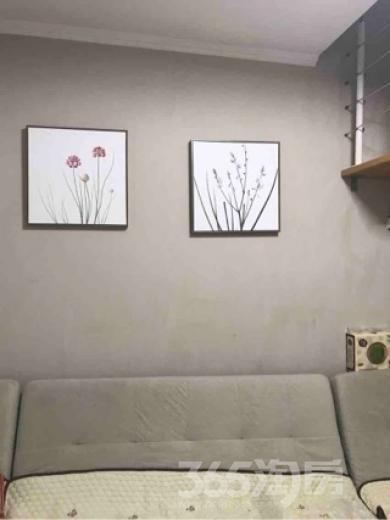 春光里3室2厅1卫68平米精装产权房2002年建