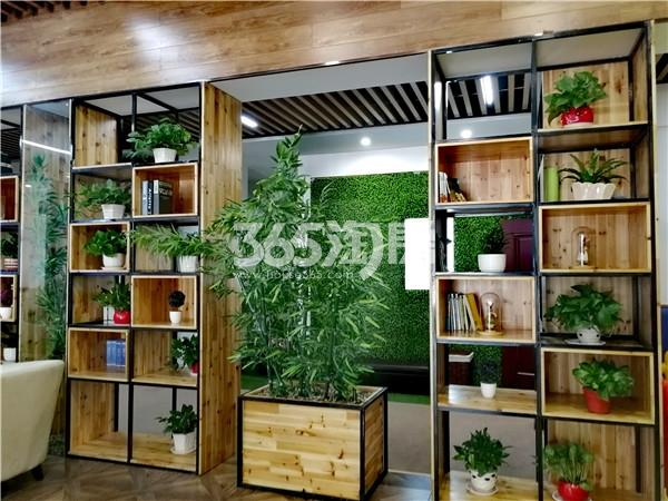 春江朗月 营销中心植物装饰 201808