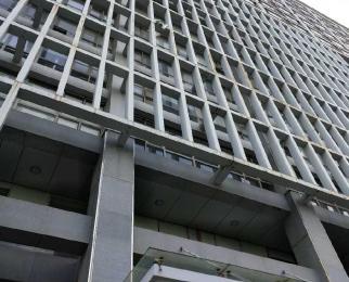 九龙湖地铁口 7200平 全明 L形框架结构