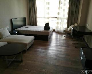 星光国际公馆1室1厅1卫54平米整租精装