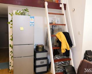 紫荆国际公寓 1室0厅 4500元