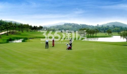 美好紫蓬山壹号周边国际标准18洞高尔夫球场