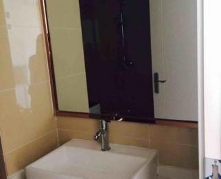 瑶海万达广场1室0厅1卫41平米整租豪华装