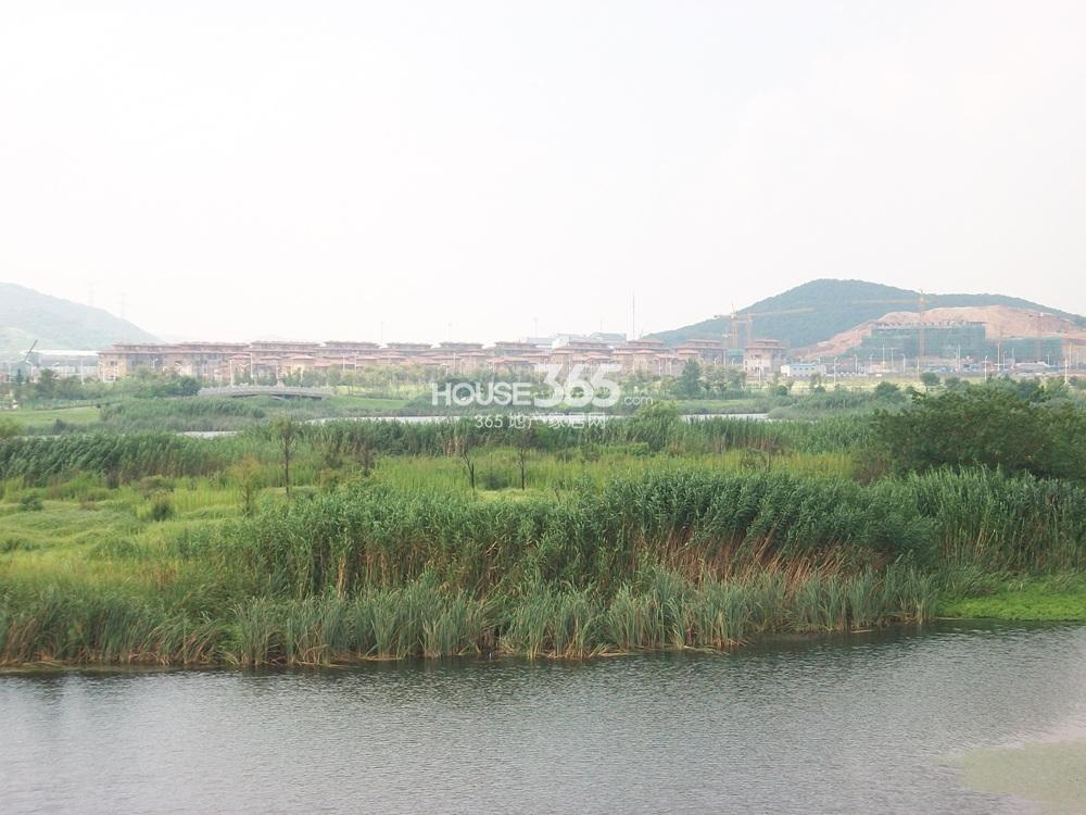 仙林湖眺瞰高科荣境实景图(9.6)