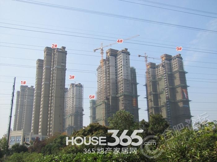 蓝鼎海棠湾3,4,6,7,9#c户型