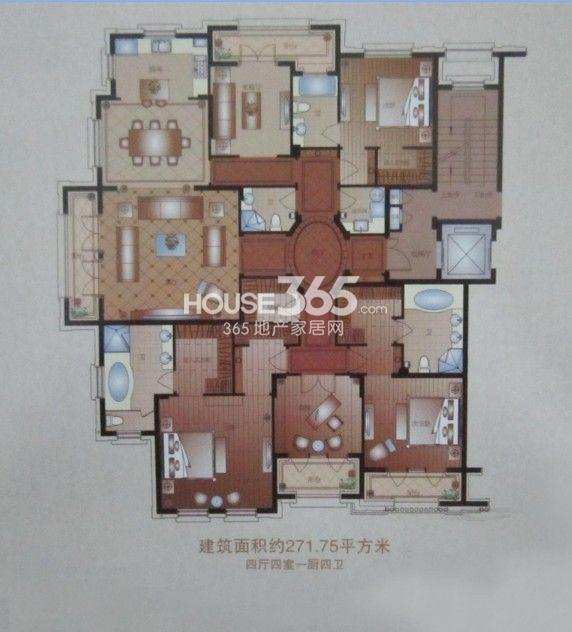 户型图 4室4厅4卫 271