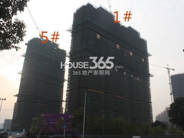 金地格林郡1#、5#工程进度实景图(2013.12.12)