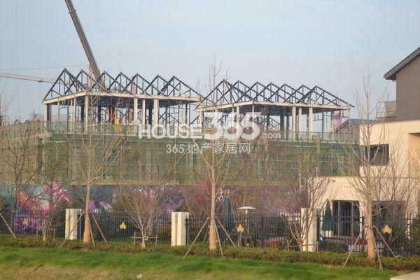 裕沁湖畔庭别墅实景图(钢结构框架)(2013.12)