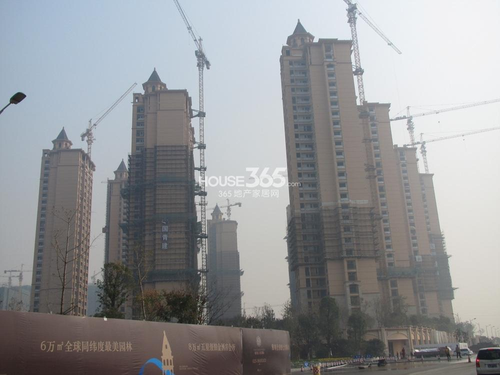 雅居乐滨江国际部分楼栋已出外立面(12.26)