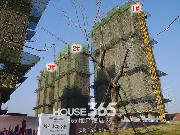 万科森林公园1月工程进度(2014.1.6)