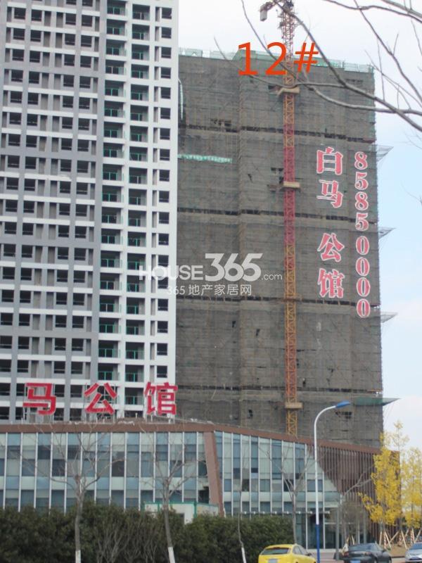 绿洲白马公馆12#楼工程实景图(2014.2.11)