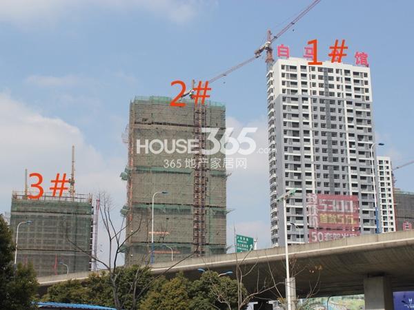绿洲白马公馆1、2、3#楼工程实景图(2014.2.11)