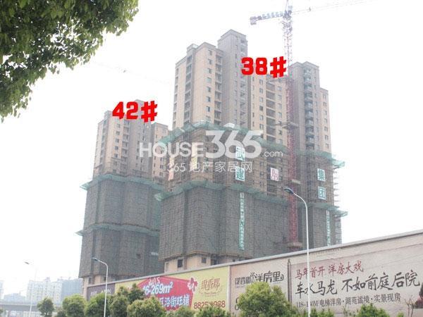 九洲花园缇香郡38、42#楼工程实景图(2014.4.10)