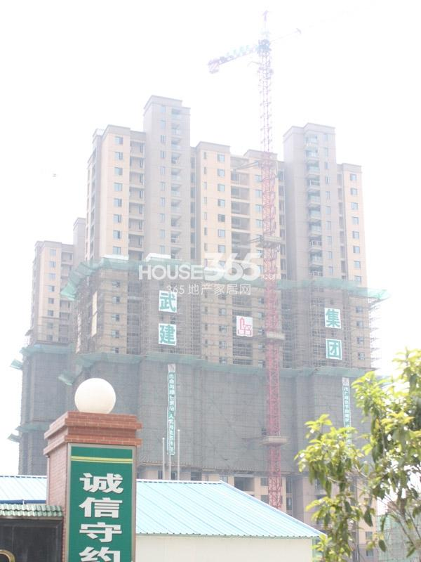 九洲花园缇香郡38#楼工程实景图(2014.4.10)