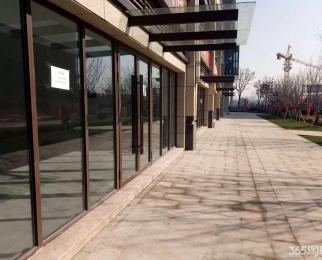 艾菲国际地铁口旁纯一楼商铺25到100平有多套招租房源可供