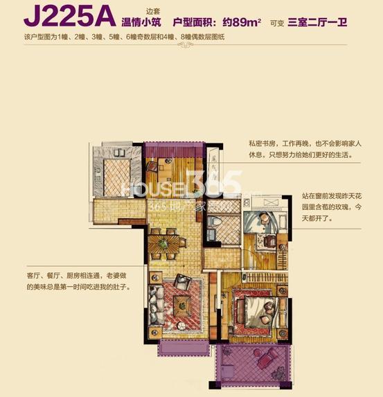 杭州碧桂园户型图