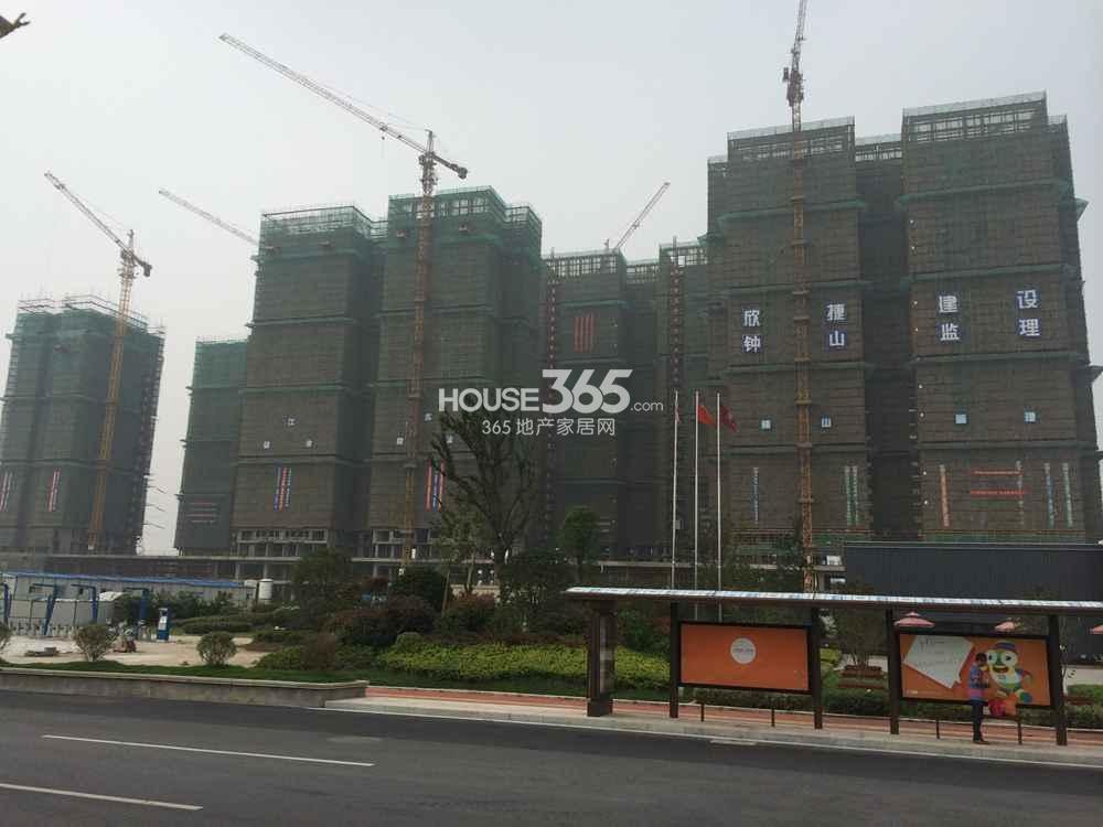 东方万汇城在建楼栋实景图(7.25)