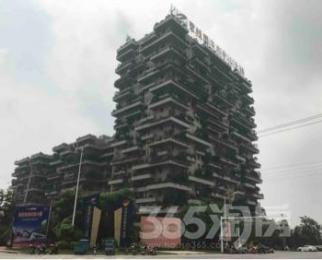 碧桂园凤凰城83平米整租毛坯可注册
