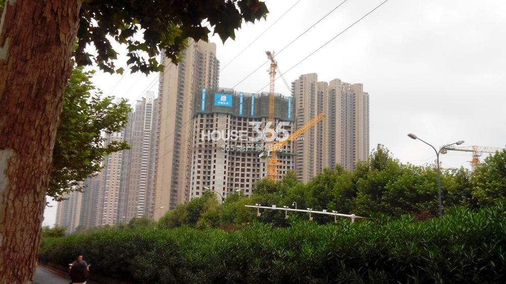 世茂外滩新城在建楼栋远望(8.20)