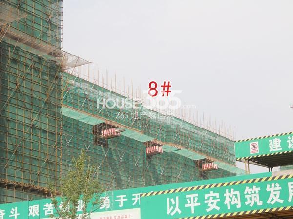 星河国际工程进度实景图(2014.8)