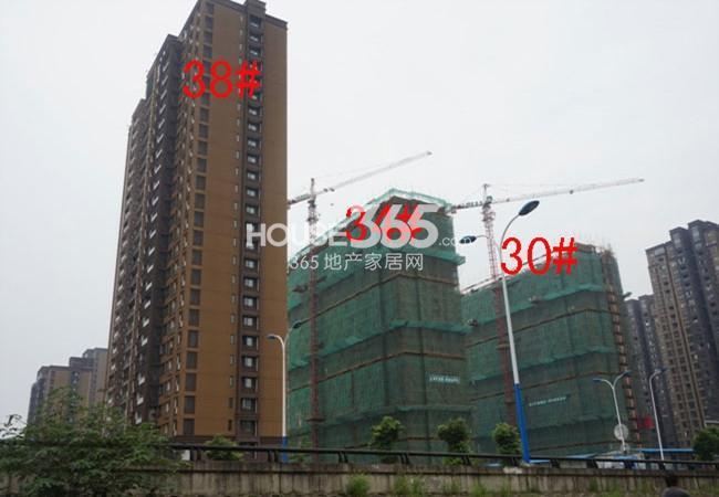 九洲花园缇香郡38#、34#、30#工地实景图(2014.8)