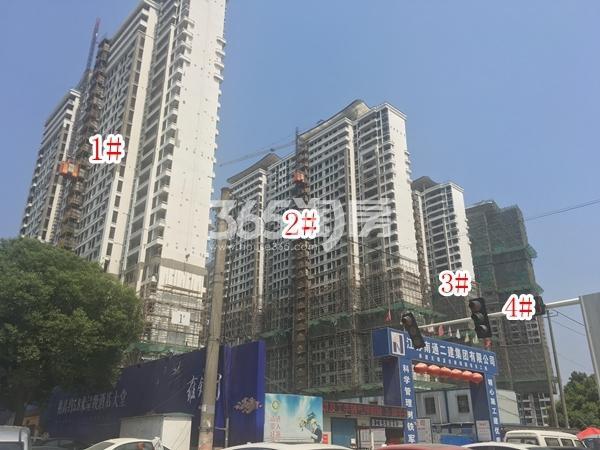 蓝光雍锦园高层1-4#楼实景图(2018.6 摄)