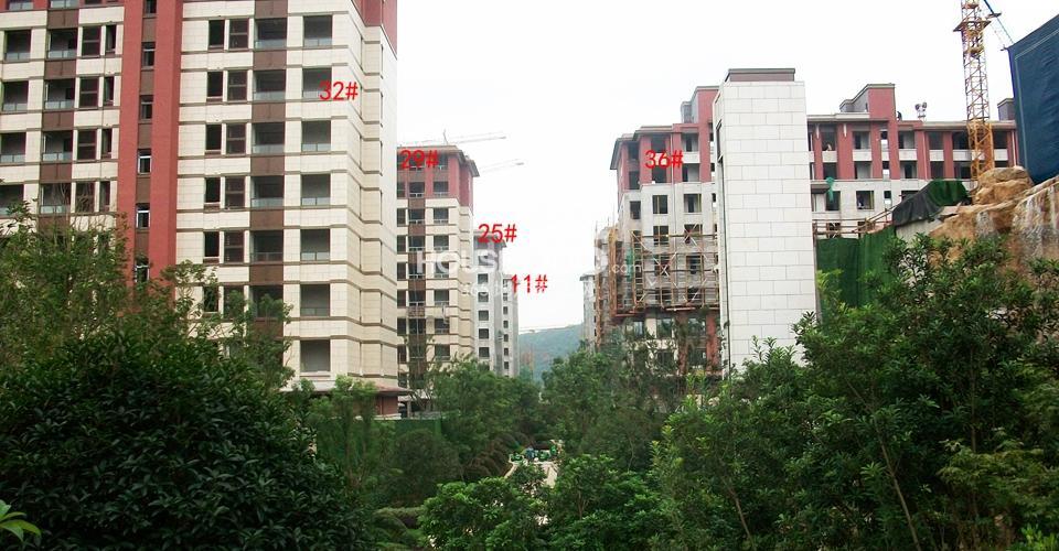 高科荣境在建小高层楼栋实景图(10.1)