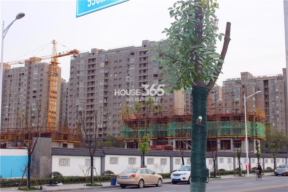 中电颐和府邸楼栋已经在建(12.3)