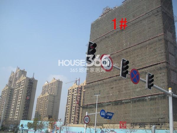中海凤凰熙岸1#楼工程进度图(2014.12)
